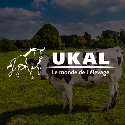 Logo Ukal blanc